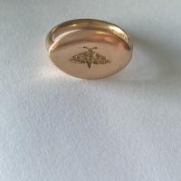 Bogong Moth signet ring.